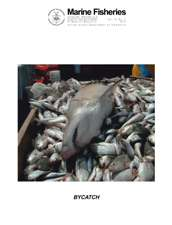 Marine Fisheries Review